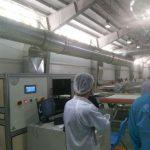 کارخانه تولید پنل خورشیدی
